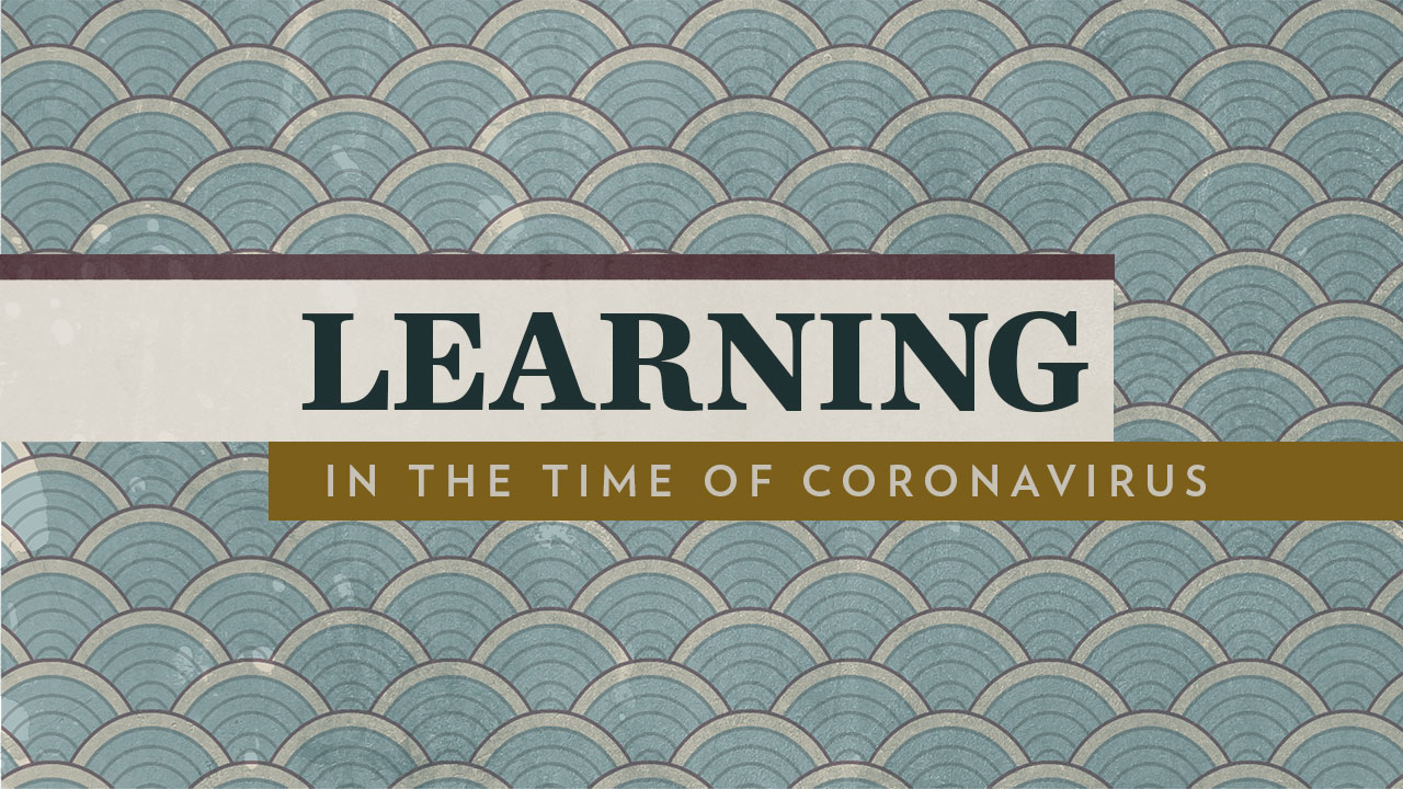 Learning in the time of Coronvarius